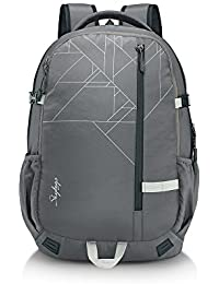 Skybags 42 Ltrs Grey Laptop Backpack (TECK1GRY)