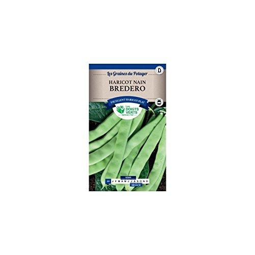 Les doigts verts Semence Haricot Nain Mangetout Bredero 250g