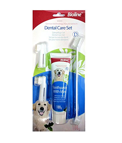 Bioline Tooth Brush Tooth Paste Set