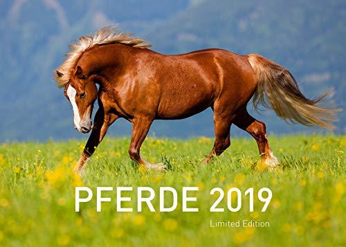 Pferde Exklusivkalender 2019 (Limited Edition)