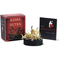 Magnetic Kama Sutra: A Naughty Sculpture Kit