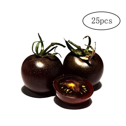 Wilk 25pcs-Noire Graines de Tomate Plantation de Fruits Bio Graines de Bricolage pour la Culture Kits