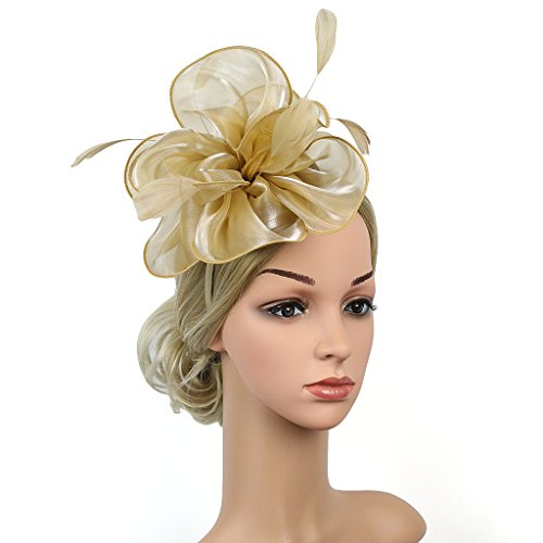 dressfan Mode Feder Fascinator Blume Haarspange Stirnband für Frau Kopfschmuck Frauen