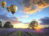 Fcuovog DIY Malen Nach Zahlen Minion Ballon Bilder Wandkunstausgangsdekor Einzigartiges Geschenk 40X50 cm (Kein Rahmen)