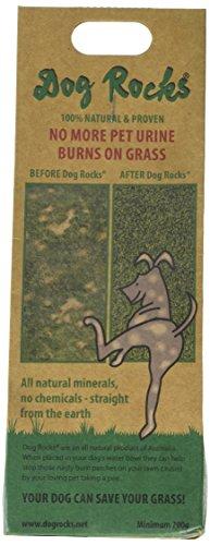 Dog Rocks Urine Patch Preventer