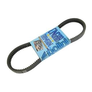 lriemen POLINI Speed Belt -  Zip SSL 25 (bis Bj. 1999)