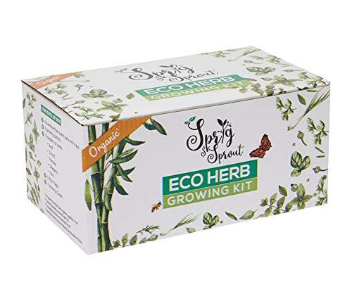 Organic eco-Friendly Indoor herb Garden Starter kit | Herb Garden Seed kit Gift Box | DIY Grow kit for The Kitchen herb Garden, Indoor herb kit Lovers