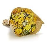 Ramo clásico de flores secas colocado dentro de una bolsa en tonos de color. Todos los productos se cultivan en Italia y se elaboran en San Remo por expertos maestros artesanos.