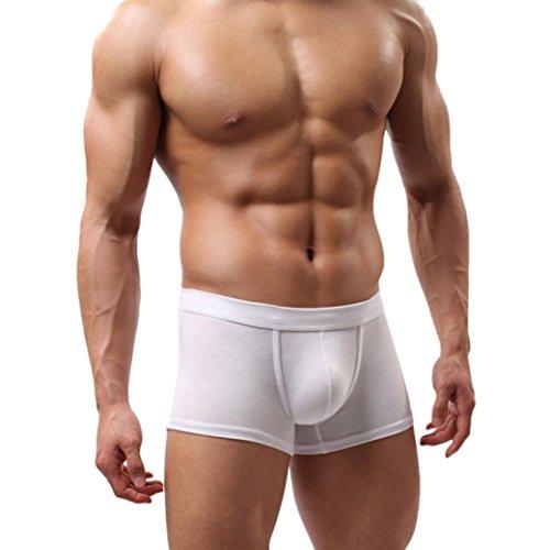 Boxershorts für Herren, Sansee Neue Männer Boxer Shorts Bulge Beutel Weiche Unterhose (L, #St01 Weiß)