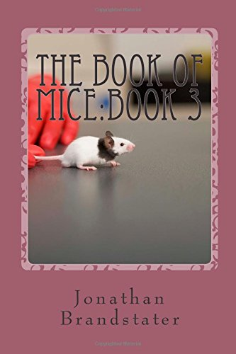 The Book of Mice:Book 3: The Punk rats!: Volume 1