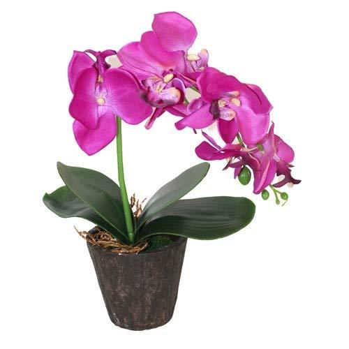 A & W Orquídea Artificial con Maceta, Resina Y Tela, Purpura, 29 Cm