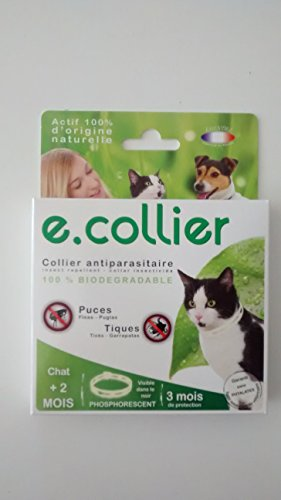 collier-antiparasitaires-phosphorescent-puces-tiques-35cm-chat2mois
