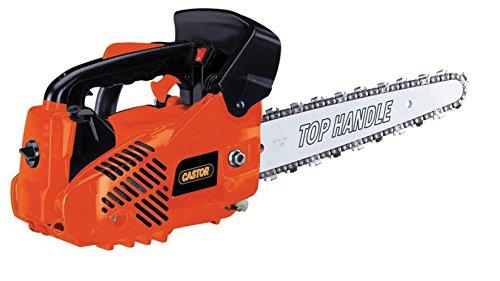Motosierra de poda Castor CP 300 C - espada Carving