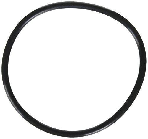 Jandy Zodiac R0480200 Deckel O-Ring für FloPro FHPM Series Pump