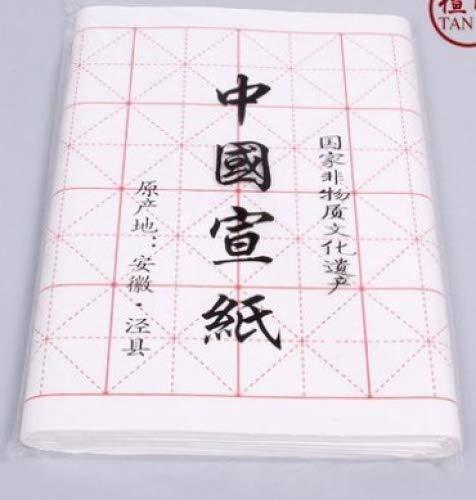 Chino Japonés caligrafía práctica Xuan papel de arroz unidades 100hojas