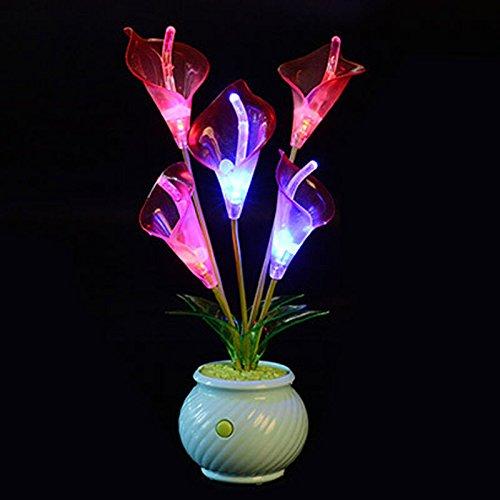 SQDTNSLT-romantica lampeggiante di colore LED Lanterna idee di simulazione di vasi di fiori e decorazione plastica lampada living room bedroom luce notturna