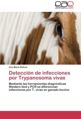 Detección de infecciones por Trypanosoma vivax por Bolivar Ana Maria