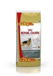 PROMOTION ! ROYAL CANIN/GERMAN SHEPERD ADULT (Berger Allemand) Sac de 12 kg + 2 kg GRATUITS/Croquettes pour Berger Allemand adulte.