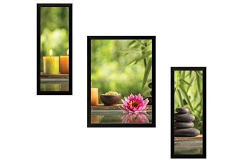 SAF Lotus Nature Set of 3 Nature 9187 Painting (35 x 3...
