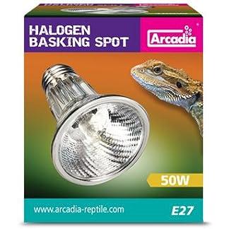 Arcadia ES SHA50E27 Halogen Basking Spot, 50 Watt 13