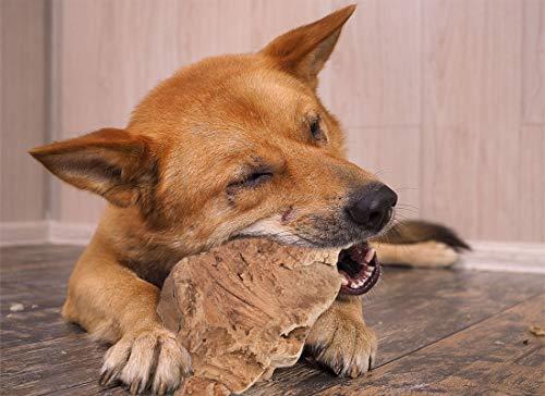 Pet Love Kauwurzel natürliches Kauspielzeug Hypoallergen Kauknochen - ohne Zusätze - ohne Kalorien...