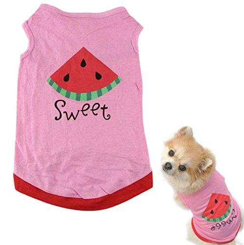 Hmeng Neue Sommer Nette Kleine Hund ❤️Welpen Katze Kleidung Wassermelone Gedruckt Rosa Weste (Pink, M) -