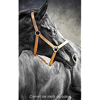 Carnet de mots de passe: Journal d'adresses de sites web et de mots de passe - Couverture avec un cheval noir