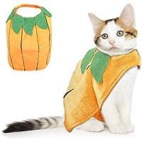 VIKEDI Halloween Kostüm Katze, Katze Halloween Kürbis Kostüm, Einstellbares Haustier Halloween Kostüm, Lustiges Haustier Kürbis Kostüm für Katzen & kleine Hunde, Haustiere Party Cosplay Dress