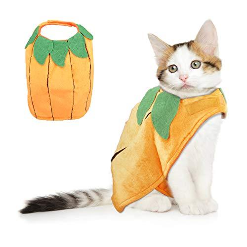 VIKEDI Halloween Kostüm Katze, Katze Halloween Kürbis Kostüm, Einstellbares Haustier Halloween Kostüm, Lustiges Haustier Kürbis Kostüm für Katzen & kleine Hunde, Haustiere Party Cosplay Dress (Arten Der Katze Kostüm)