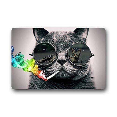 But why miss Fashions Doormat Cool Sunglasses Cat Love Sexy Indoor/Outdoor/Front Welcome Door Mat(23.6