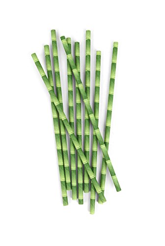 Kikkerland Strohhalme, Papier, Grün, 22.8 x 15.2 x 4 cm - Grüner Bambus