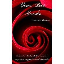 COMO DIOS MANDA: Una sátira totalmente posmoderna y muy, pero muy políticamente incorrecta (Spanish Edition)