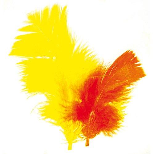 La Fourmi Truthahnfedern, 5-9 cm, 5 g, Gelb/Orange