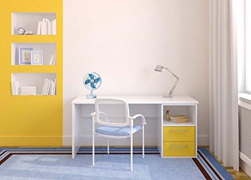 Bajaj Ultima PT01 14 Inch Small Table Fan (White)