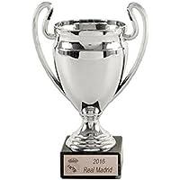 Trofeos 13 Copas De Europa Real Madrid Replica PACK de 13 de 16cm GRABADO Trofeos PERSONALIZADOS Trofeos Deportivos Trofeos de Fútbol Replica Champions League Titulos Real Madrid