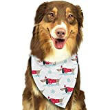 Sdltkhy Pet Bandana Pattern with Cute Dachshund Dogs Washable and Adjustable Triangle Bibs for Pet Cats and Puppies