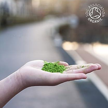 Bio-Matcha-Grner-Tee-Pulver-30g-Feinste-zeremonielle-Premium-Klasse-Dunkelgrn-Produkt-von-Kyoto-Uji-Japan-voller-Antioxidantien-Perfekt-fr-die-Gewichtsabnahme-Bio-Batch-M13