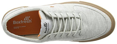 Boxfresh Ackroyd Bch Jrsy Lt Gry/Org, Baskets Basses Homme Gris - Grey (Gry/Org)