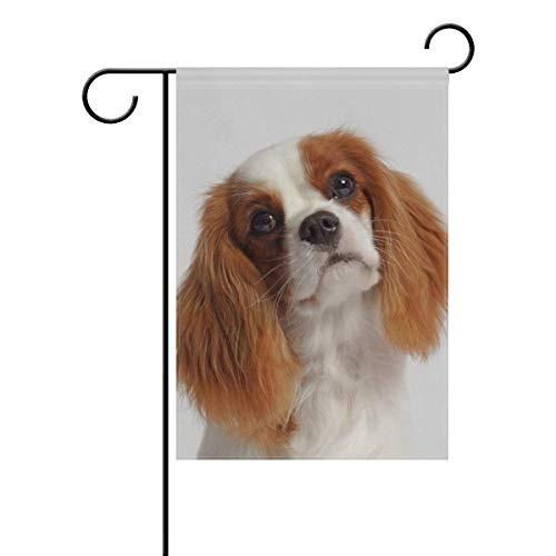 YATELI Unbekümmerter Königcharles Spaniel-Hundegarten-Flaggen-Fahne 12 x 18 Zoll-dekorativer Rasen und Haus doppelseitig -