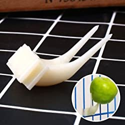 SLB Works Pet Parrot Plastic Fruit Fork Birds Food Holder Feeder Device Pin Clip Budgie.