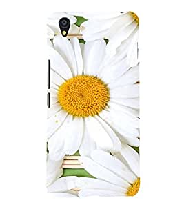 ifasho Designer Back Case Cover for OnePlus X :: One Plus X ( Wedding Ceremony Sao Paulo Jhansi Panvel Malerkotla)