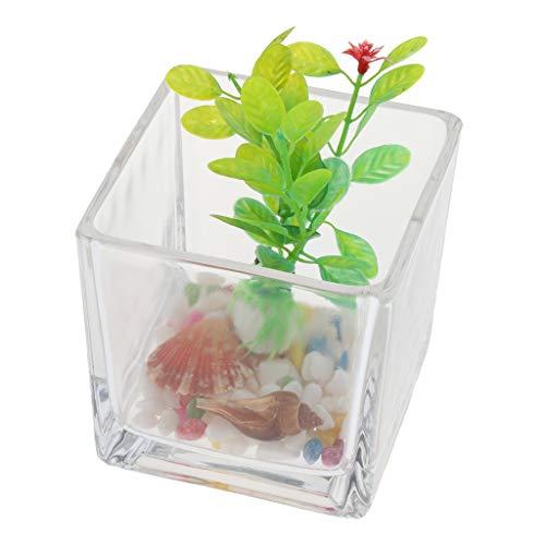 Homyl Mini Aquarium Fisch Tank Fischbecken mit Kunstpflanzen, Steine und Muscheln