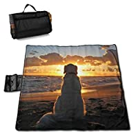 """MZZhuBao Golden Retriever at Sunset Oversized Foldable Picnic Blanket 57"""""""" x59 Outdoor Waterproof Sand Free Blanket Mat with Tote Bag for Yard Lawn"""