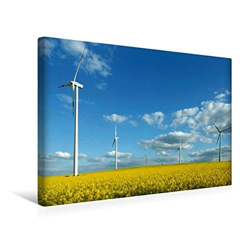 Premium Textil-Leinwand 45 cm x 30 cm quer, Ein Motiv aus dem Kalender Energie - erneuerbar - Biomasse | Wandbild, Bild auf Keilrahmen, Fertigbild auf echter Leinwand, Leinwanddruck (CALVENDO Wissen)