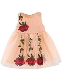 Bebé de la princesa vestido de las muchachas, Koly dulce de verano de los bebés del desfile de los vestidos sin mangas Apliques Rose