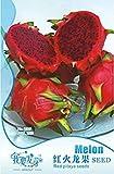 1 paquete original, 15 semillas / paquete, Pitaya rojo dentro de Red exterior, dulce fruta del dragón, Pitaya Cactus, muy delicioso # NF008