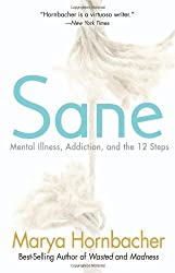 Sane: Mental Illness, Addiction, and the 12 Steps by Marya Hornbacher (2010-10-30)