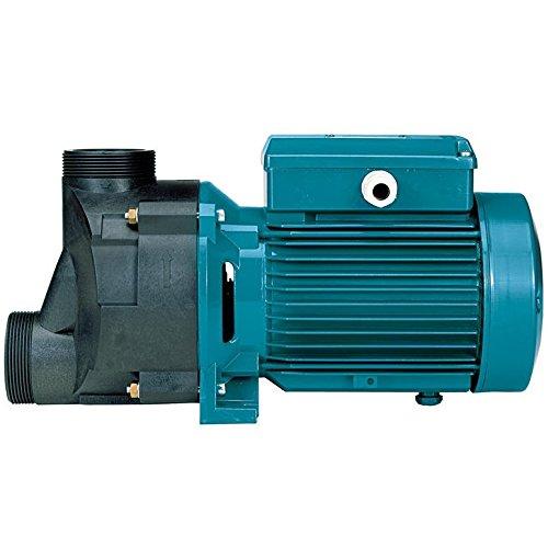selbstentleerende-whirlpoolpumpen-spa31m-a-075kw-1hp-230v-calpeda-spam