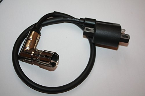 Shineray Zündspule + Zündkerzenstecker EGL Eagle Lyda Loncin 250 200 Quad Ignition Coil