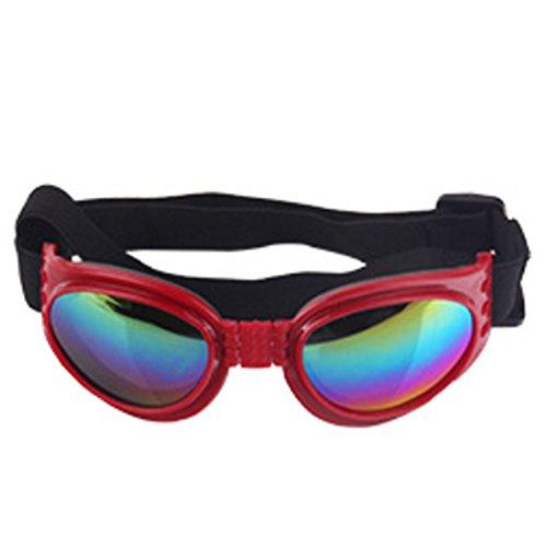 QQBL Hund Sonnenbrille Sonnenbrille Hund Sonne Spiegel Hund Sonnenschutz Wind Brille UV400 Kunststoff Schutz Spiegel Pet Produkte 0.12Kg,Red
